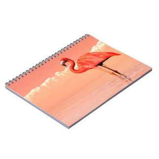 Pink flamingo in the water - 3D render Notebook