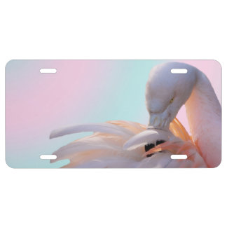 Pink Flamingo License Plate