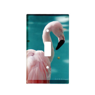 Pink flamingo light switch cover