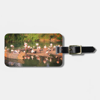 Pink Flamingo Luggage Tay Luggage Tag