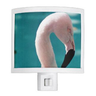 Pink flamingo nite lite