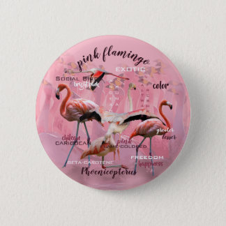 Pink Flamingo Typography | Customized 2 Inch Round Button