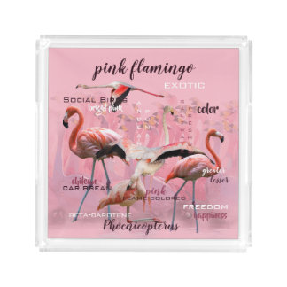 Pink Flamingo Typography | Customized Acrylic Tray