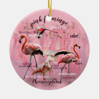 Pink Flamingo Typography | Customized Ceramic Ornament