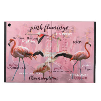 Pink Flamingo Typography | Customized iPad Air Case