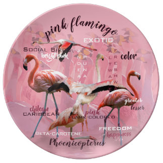 Pink Flamingo Typography | Customized Plate