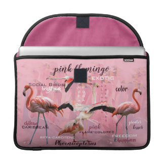Pink Flamingo Typography | Customized Sleeve For MacBook Pro
