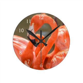 Pink Flamingos at Gatorland Wall Clocks