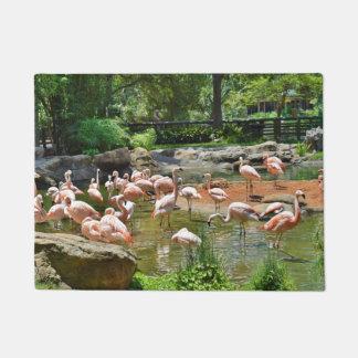 Pink Flamingos Door Mat
