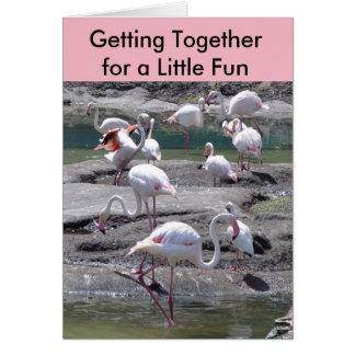Pink Flamingos Get Together Card