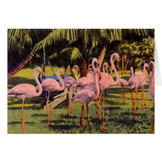 Pink Flamingos in Florida Card