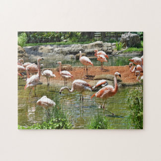 Pink Flamingos Jigsaw Puzzle
