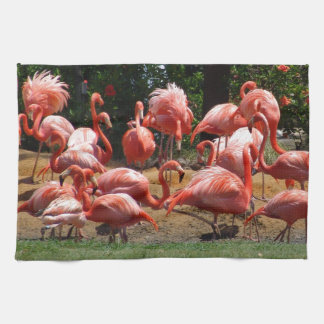 Pink Flamingos Kitchen Towel