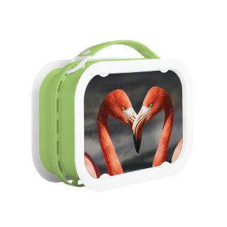 Pink flamingos lunch box