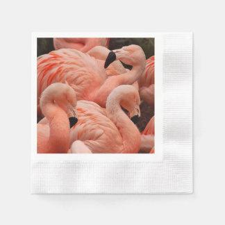 Pink flamingos paper napkin