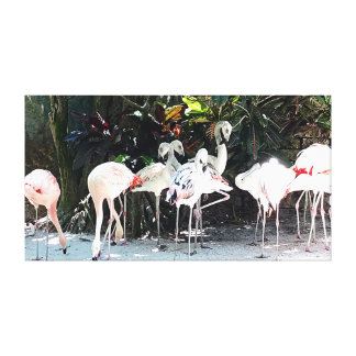 Pink Flamingos Stretched Canvas Print