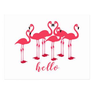"Pink Flock Of Flamingos ""Hello"" Postcard"