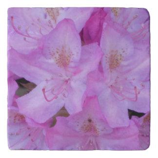 Pink Floral Trivet