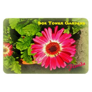 Pink Flower Bok Tower Gardens Lake Wales Florida Rectangular Photo Magnet