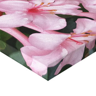 Pink Flower Canvas