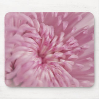 Pink Flower Close up Mouse Pad