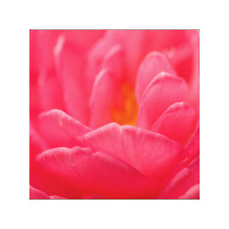 Pink flower design cards and paper products canvas prints