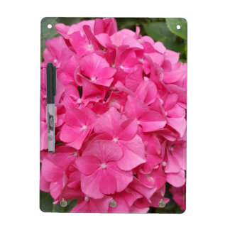 Pink Flower Floral Photography Nature Dry Erase Board