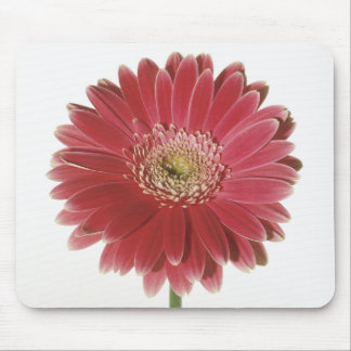 Pink Flower Happiness Mouse Pad