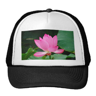 Pink Flower Hats