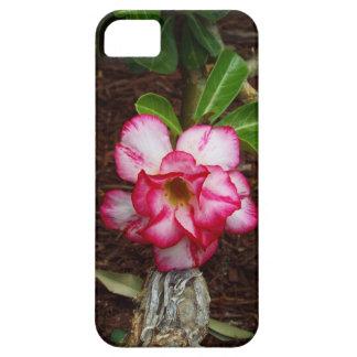 Pink Flower iPhone 5 Case