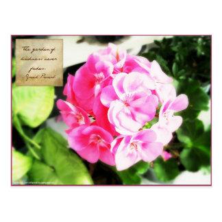 Pink Flower & Kindness Proverb Postcard