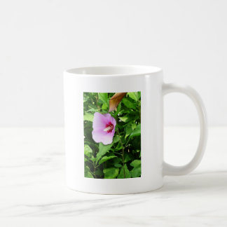 PINK Flower Lilly TEMPLATE Reseller Holiday Gifts Mugs