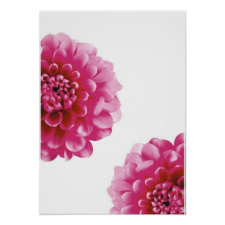 pink flower mum poster