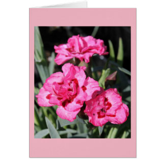 Pink Flower Notecard