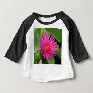 Pink Flower of Succulent Carpet Weed Baby T-Shirt