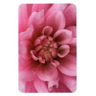 Pink Flower Rain Drop Floral Watercolor Magnet
