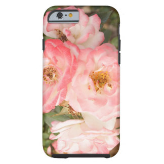 Pink Flower Rose iPhone 6 Phone Case
