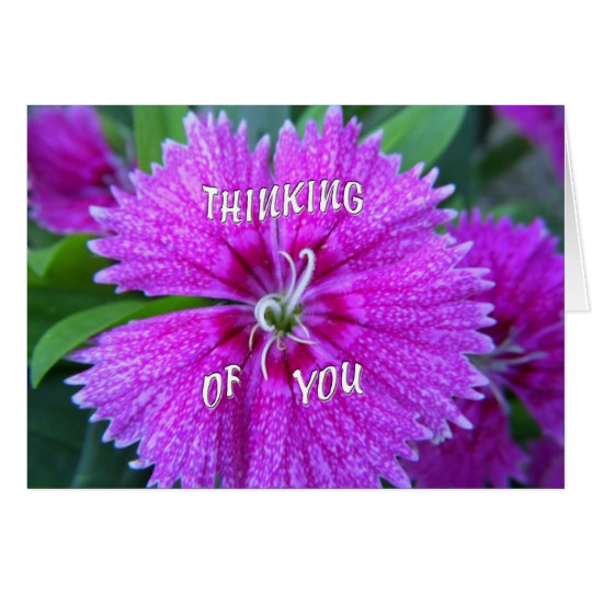 Pink Flower Thinking of You Card
