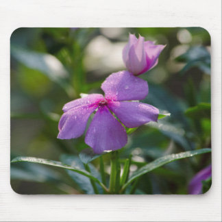 pink flower with dew drops mousepad