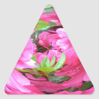 Pink Flower with Green Leaf Triangle Sticker