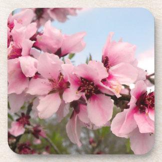 Pink Flowering Branch Coasters Set
