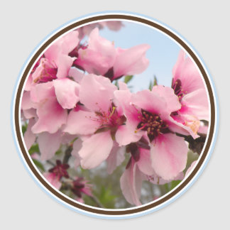 Pink Flowering Branch Stickers