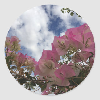 pink flowers against a blue sky classic round sticker