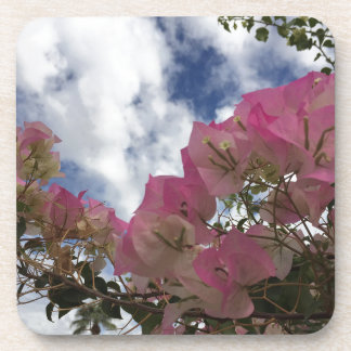 pink flowers against a blue sky coaster