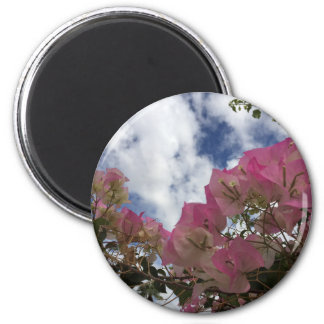 pink flowers against a blue sky magnet