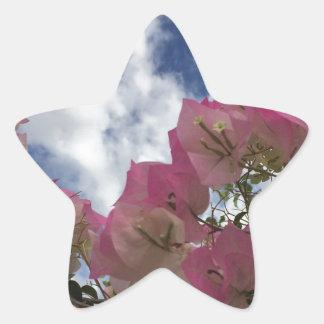 pink flowers against a blue sky star sticker