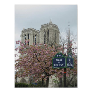 Pink Flowers at Notre Dame Poster
