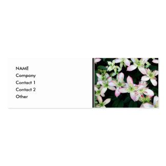 Pink flowers. Clematis. Business Card Templates