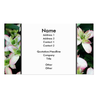 Pink flowers. Clematis. Business Card Template