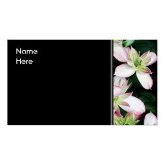 Pink flowers. Clematis. Business Cards